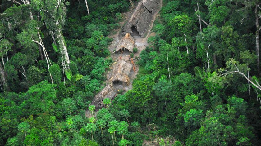 Fotos: Survival International